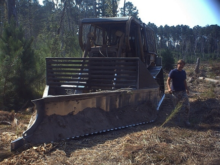 Reynolds Forestry Consulting Quality Timber Management